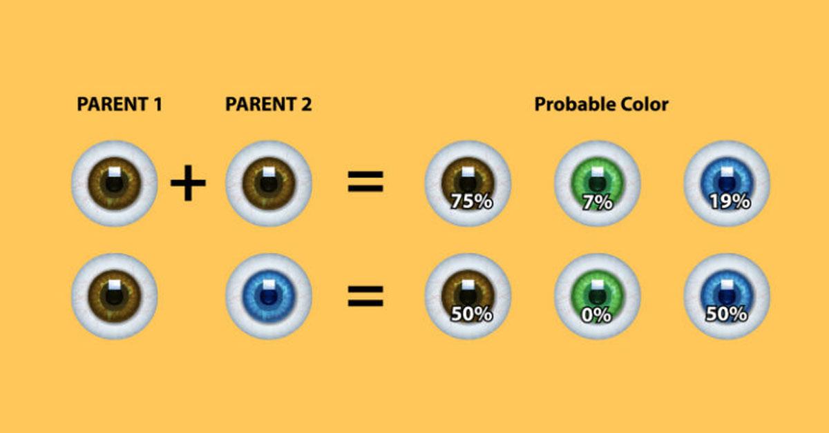 eye genetics