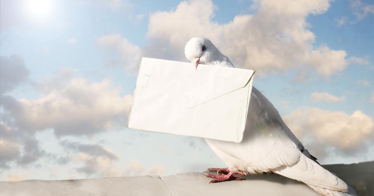 letter sent to heaven